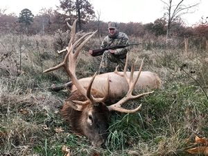 Trophy Elk Hunts